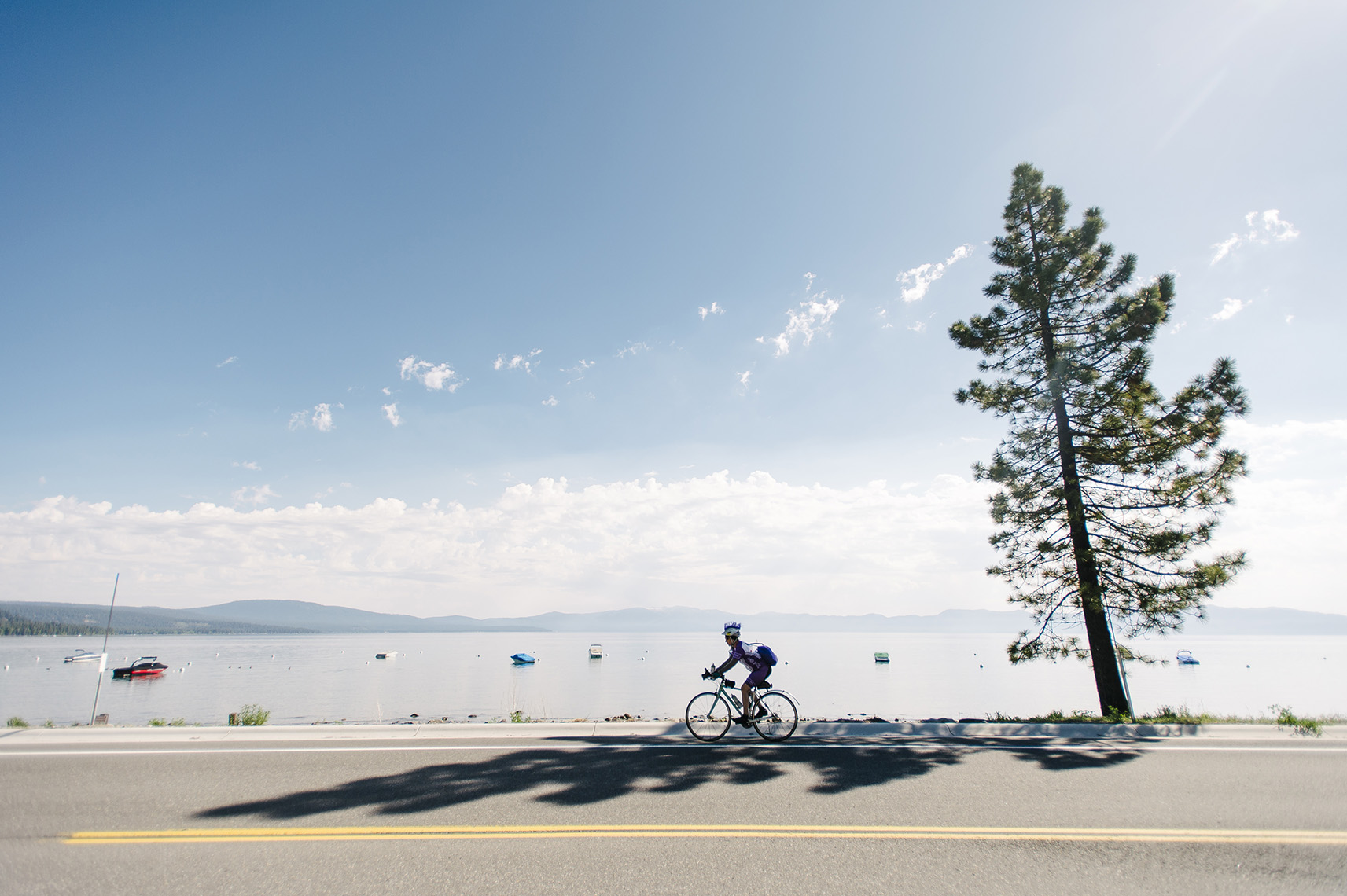 rider-team-in-training-ambbr-lake-tahoe